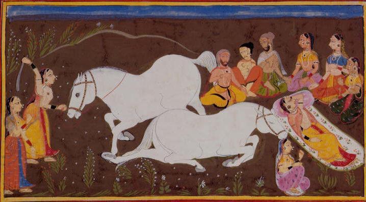 Индийский обряд ашванедхе- жертвоприношение коня